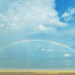 よくある質問 / 当日雨天の場合はどうなるのですか?